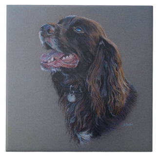 Engish Cocker Spaniel dog. Fine art painting. Tile