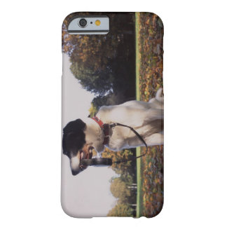 England, St.Albans Barely There iPhone 6 Case