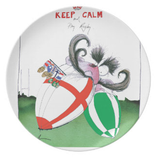 england v ireland rugby balls - from tony fernande plate