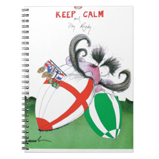 england v ireland rugby balls - from tony fernande spiral notebook