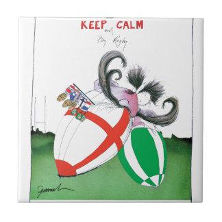 england v ireland rugby balls - from tony fernande tile