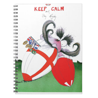 england v wales rugby balls from tony fernandes notebooks