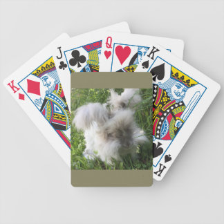 "English Angora ""Bradley"" playing Cards"