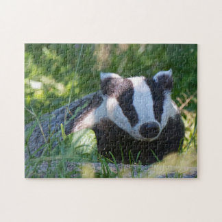 English Badger Puzzle