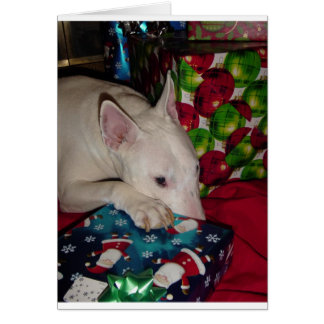 english bull terrier christmas present card