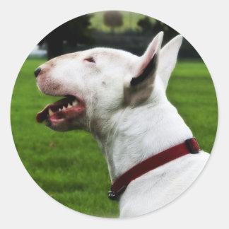 English Bull Terrier Round Sticker