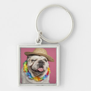 English Bulldog (18 months old) wearing a straw Keychain