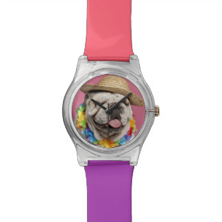 English Bulldog (18 months old) wearing a straw Watch