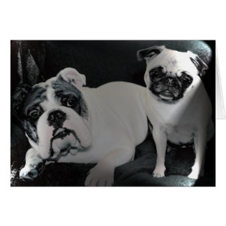 English Bulldog and Pug Greeting Card