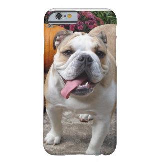 English Bulldog Cute Funny iPhone 6 case covers ca
