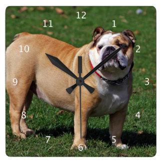 English Bulldog dog cute beautiful photo Wall Clock