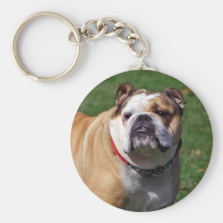 English bulldog keychain, gift idea keychain