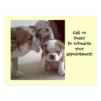 English Bulldog Mom &Pups postcards shot reminder