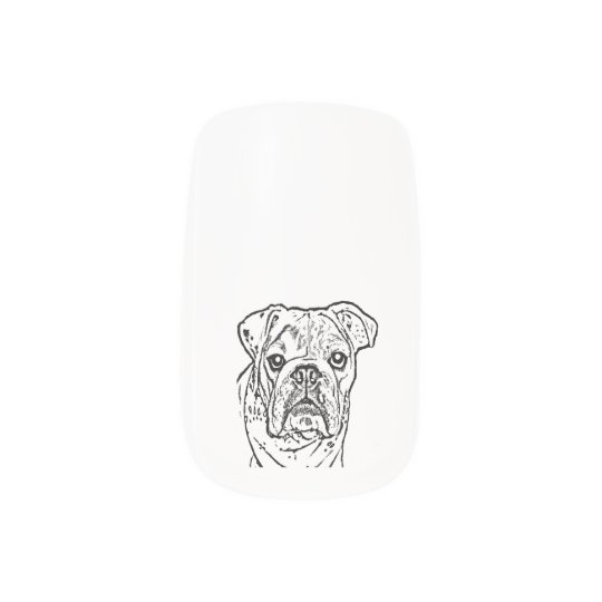 english bulldog nail nails sticker
