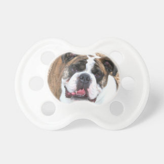 English Bulldog Pacifier