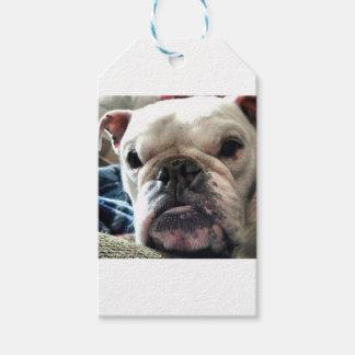 English Bulldog Pack Of Gift Tags