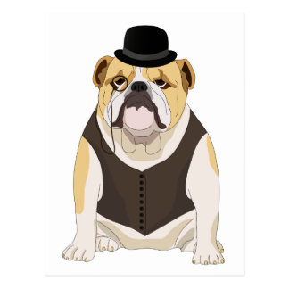 English Bulldog Postcard