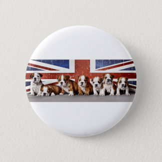 English bulldog puppies 2 inch round button