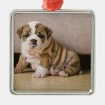 English bulldog puppies Silver-Colored square ornament