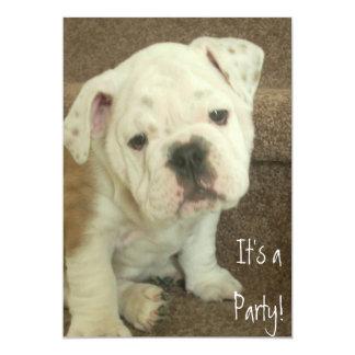 English Bulldog Puppy Invitations Party