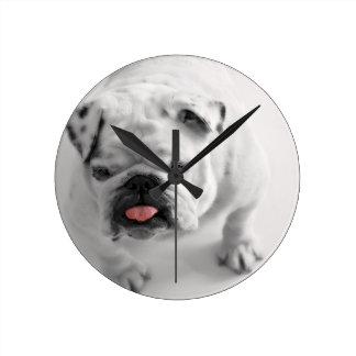 English Bulldog Puppy Wallclock