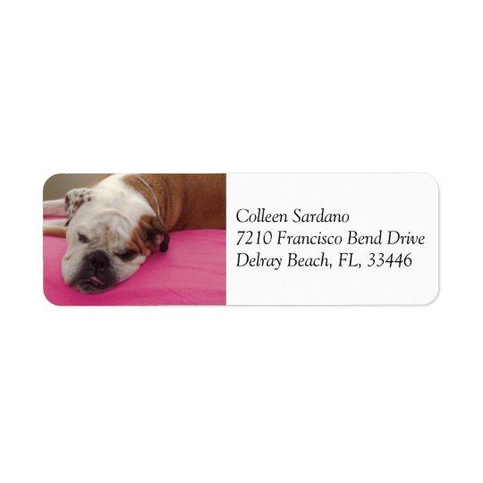 English Bulldog Return Address Label