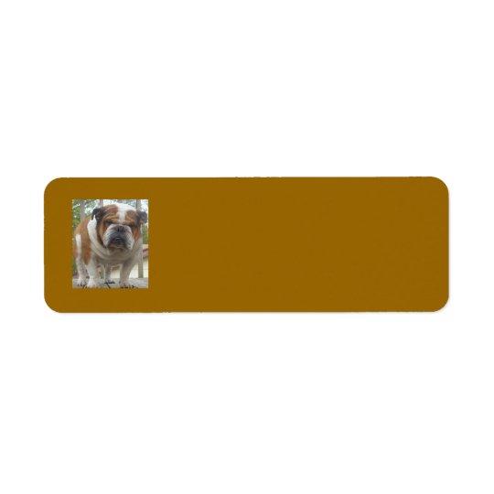 English Bulldog Return Address Labels