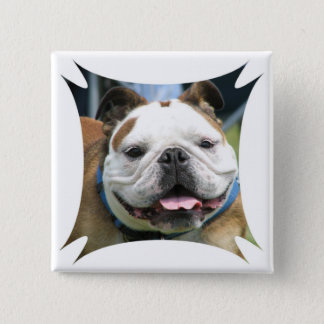 English Bulldog Square Pin