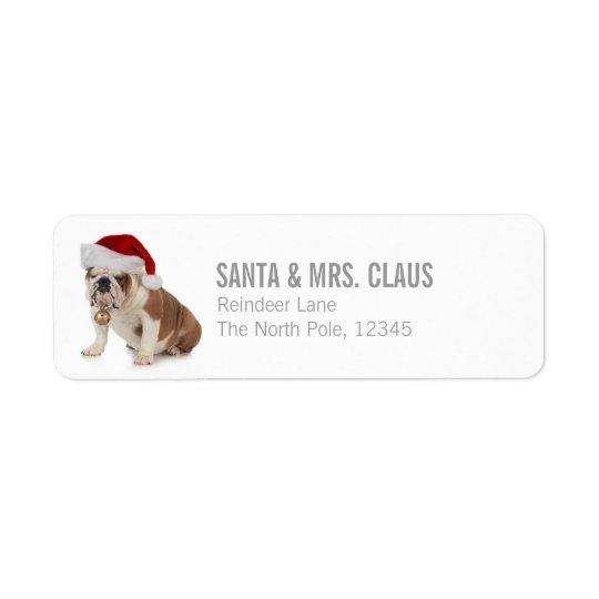 English Bulldog Wearing Santa Hat