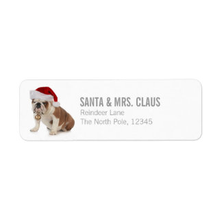 English Bulldog Wearing Santa Hat Return Address Label