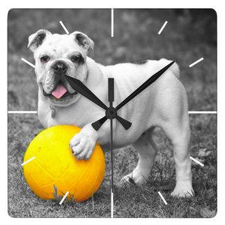 English bulldog white and the yellow ball clocks