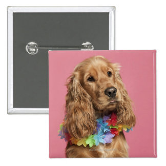 English Cocker Spaniel (10 months old) 2 Inch Square Button