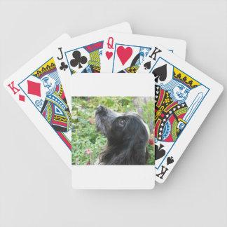 English Cocker Spaniel Bicycle Playing Cards