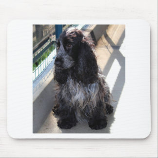 English cocker spaniel mouse pad