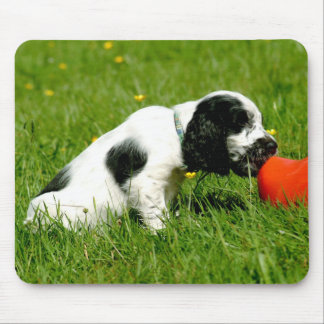 English Cocker Spaniel Puppy Mousepad