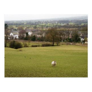 English Countryside Postcard