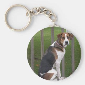 English Foxhound Keychain