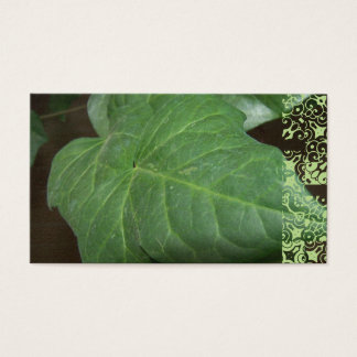 English ivy, John 15:5 Business Card