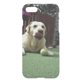 English Lab iPhone 8/7 Case