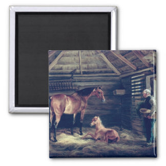 English Mare With Her Foals, 1833 Fridge Magnet