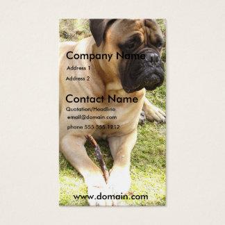 English Mastiff Dog Business Card