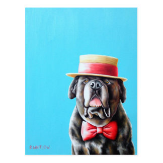 English Mastiff Postcard - Meathead