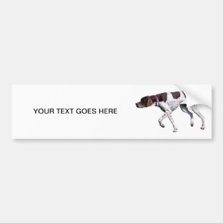 English Pointer dog photo custom bumper sticker