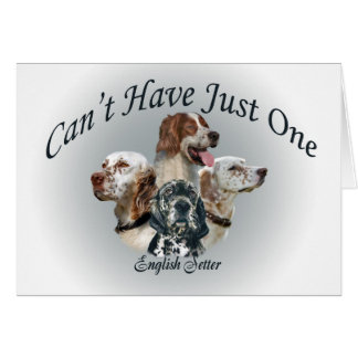 English Setter Can't Have Just One Cards