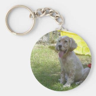 english setter orange_belton_puppy keychain