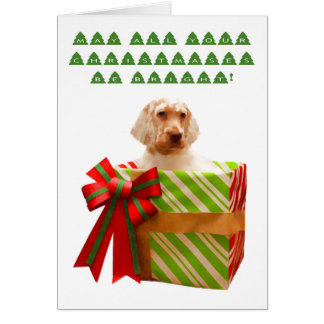 English Setter Puppy Christmas Card