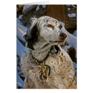 English Setter Snow #2 Card