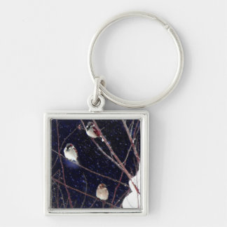 English Sparrow Bird Family in Snowy Winter Storm Silver-Colored Square Keychain