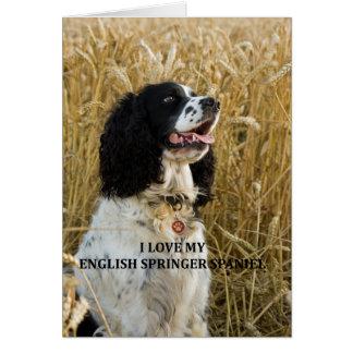 english springer spaniel bwlove w pic card