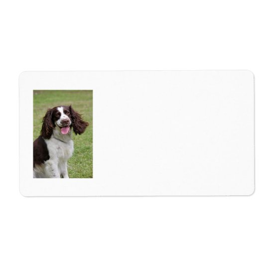 English Springer Spaniel dog address labels